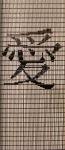041             vliegengordijn liefde chinees teken Liso® Kant-en-Klaar