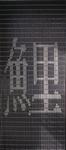 088             vliegengordijn goi DHZ-Pakket Liso®